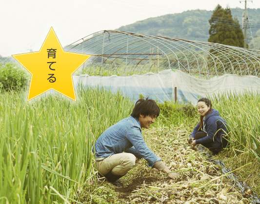 本田農園さん